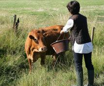 Rural Finance Authority Programs