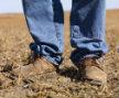Rural Real Estate Loans