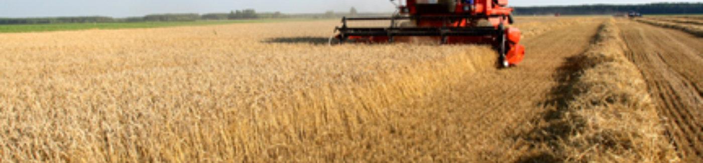 Agriculture/Farm Loans