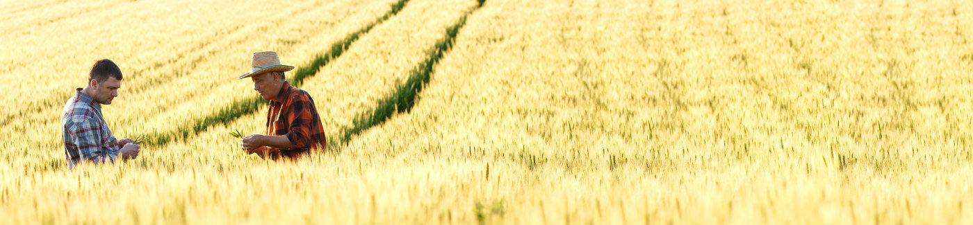 Farm & Land Loans