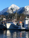 Commercial Fishing Line of Credit