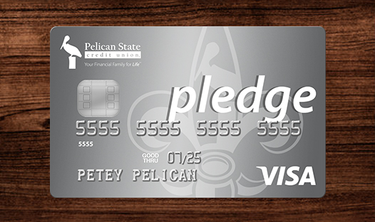 Visa Pledge