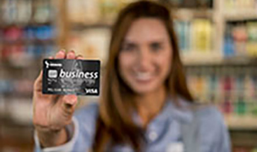 Business Share Pledge Visa