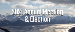 2021 Annual Meeting and Election