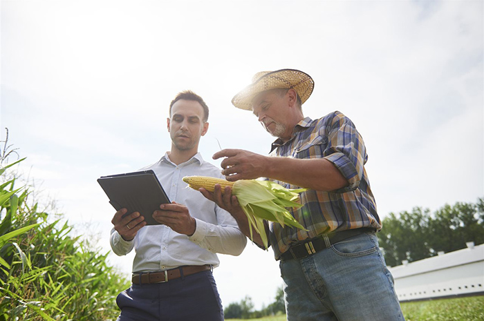 Agriculture insight: Major players nurture innovation by supporting startups