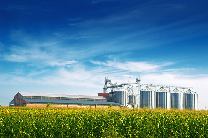 Helpful resources for Minnesota farmers coping with financial and emotional stress