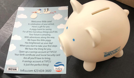 Tennessee Valley Federal Credit Union Helps New Parents Save