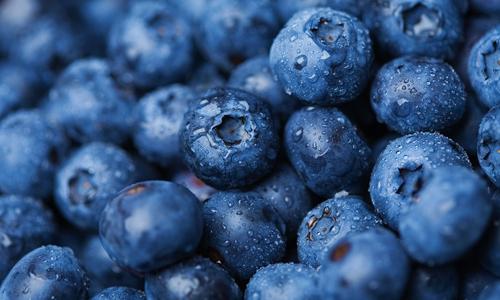 Alabama Blueberry Festival