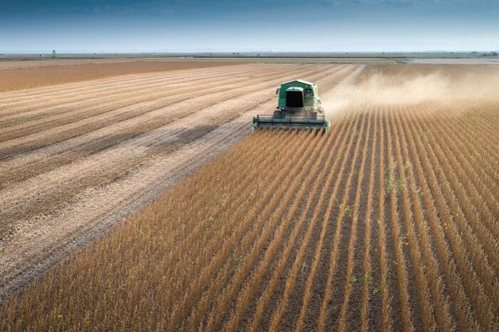 A glimmer of hope for the 2019 Minnesota soybean harvest?