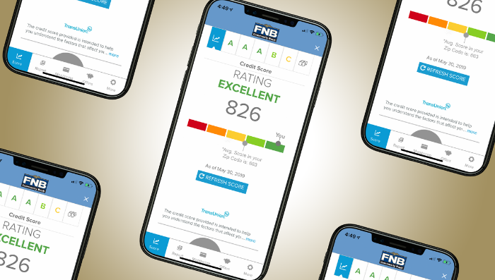 Credit Sense: FNB's new, free tool to check your credit score within our mobile banking app