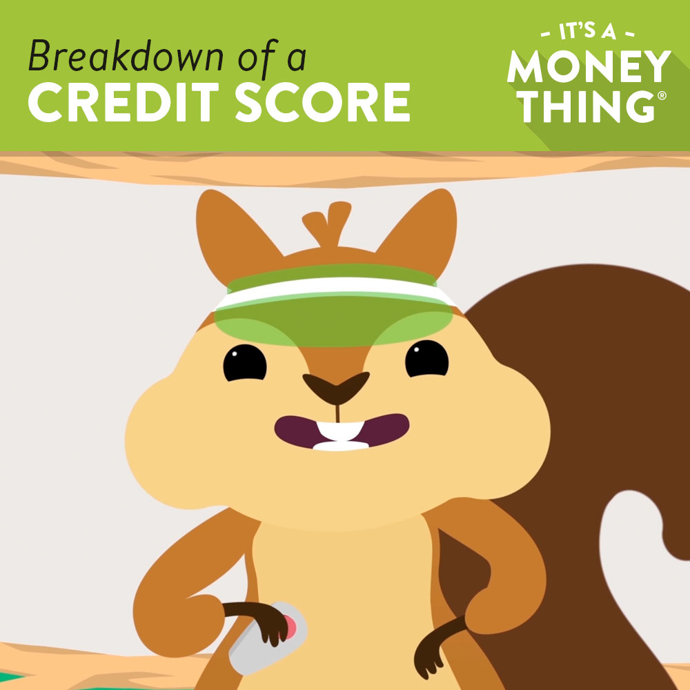 Breakdown of a Credit Score