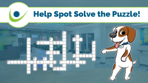 Help Spot Solve the Puzzle!