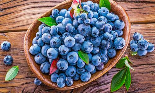 40th Annual Alabama Blueberry Festival
