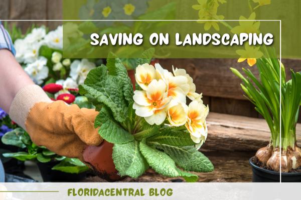 Saving on Landscaping