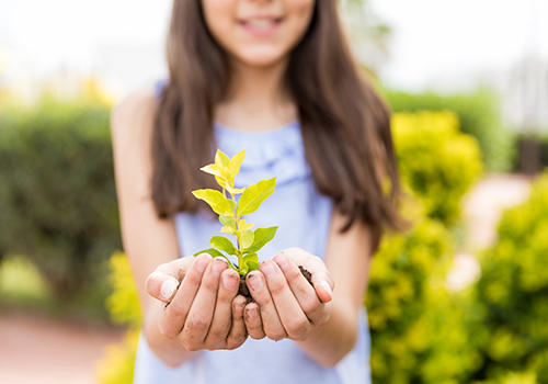 7 Ways to Celebrate Earth Day at Home